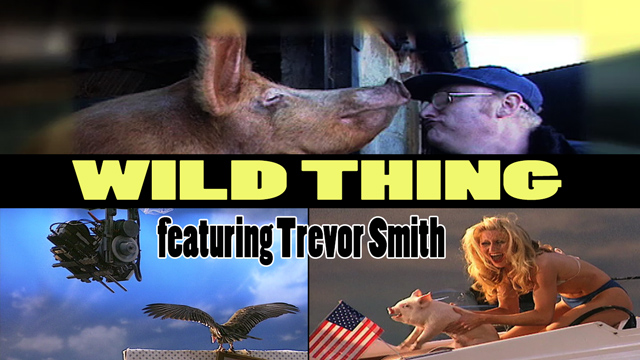 Wild Thing - Season One