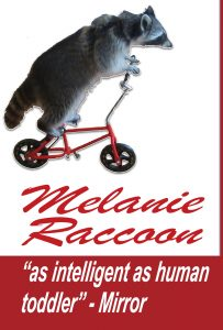 Melanie Raccoon - Click to watch on vimeo